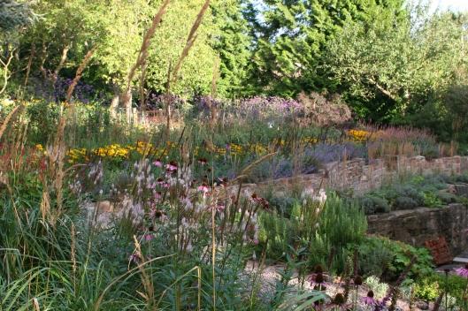 Grasses terrace 2012
