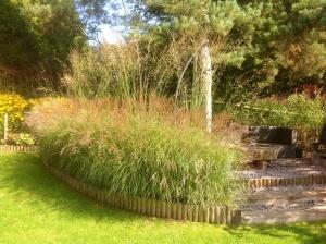 Barn House Garden - Autumn miscanthus starlight hedge seating area