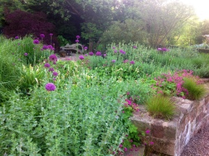 Grass and alliums