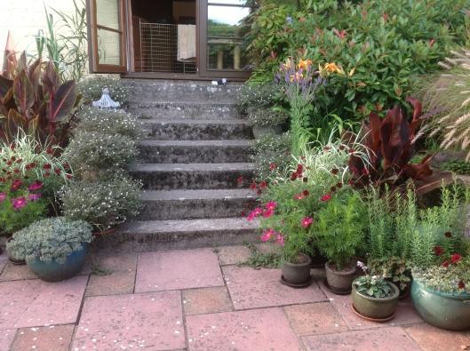 Summer patio pots steps geraniums