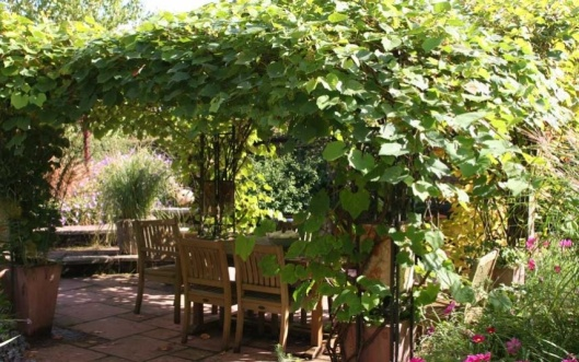 Spring early summer pergola table