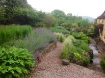 Spring grasses terrace nepeta alliums calamagrostis