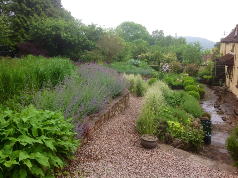 Barn House Garden in Spring may grasses terrace clal