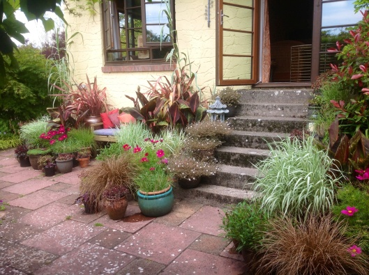 Barn House Garden in Summer June patio pots steps seating sunken terrace