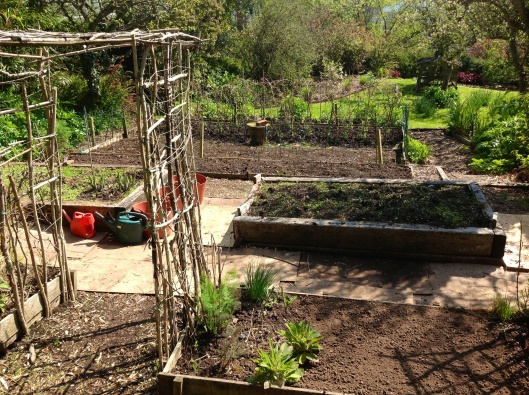 Preparing vegetable beds ...high hopes in March
