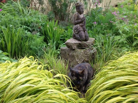 Hakonechloa lily monk june