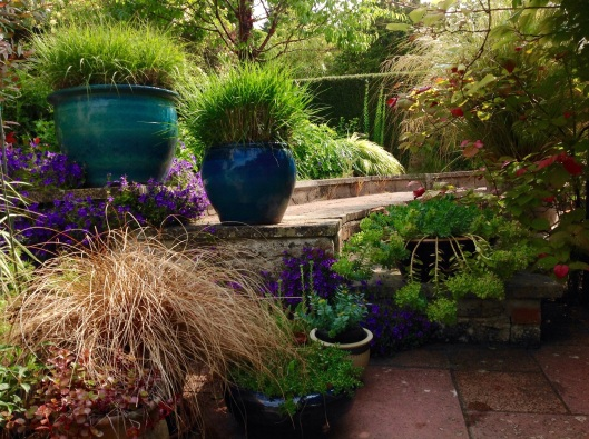 Patio pots blue Pennisetum June