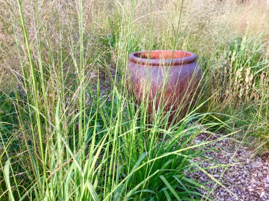 Salt glazed pot in meadow