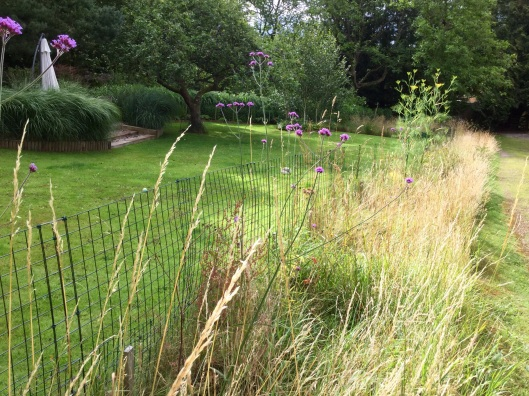Rough grass fencing July