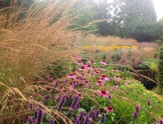 Grasses terrace from the round bed