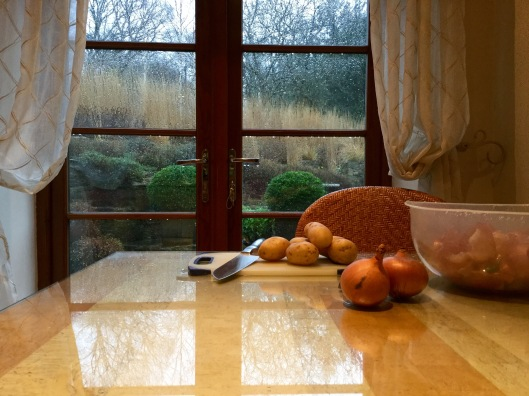 View of rainy garden from kitchen