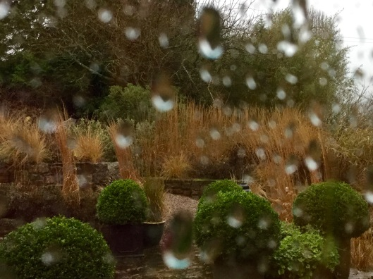 Raindrops on window pane and terrace of grasses
