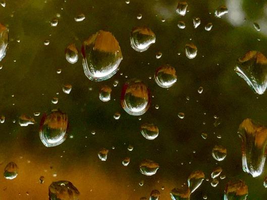 Close of a gang of rain drops