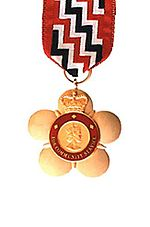 Male Companions badge
