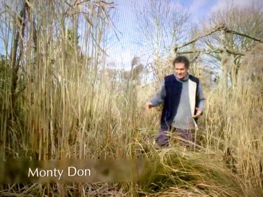 Monty Don grass border