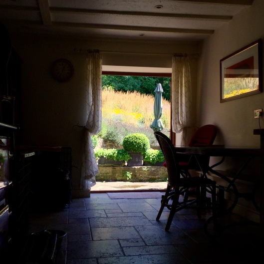 Kitchen view of grasses terrace 2016