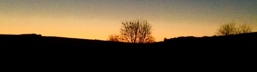 Dawn skies at Helsbury Park