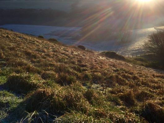 Hillsides drenched in golden light.