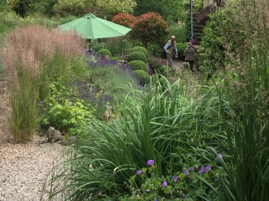 NGS day 2017 - teas on the terrace